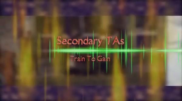 Train to Gain