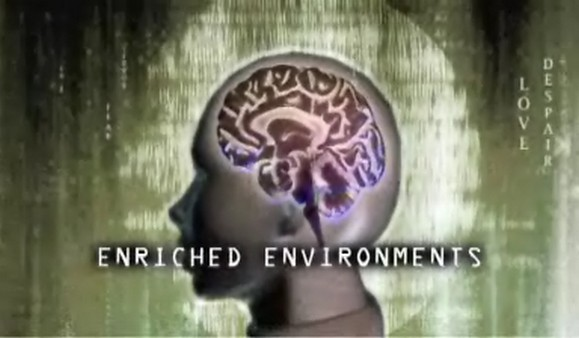 Innovations/Brain Science Shorts – The Brain and Memory (w/t)