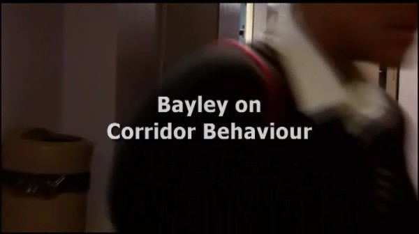 Bayley on Corridor Behaviour – A Fresh Approach
