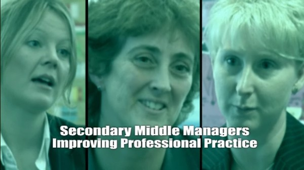 Improving Professional Practice