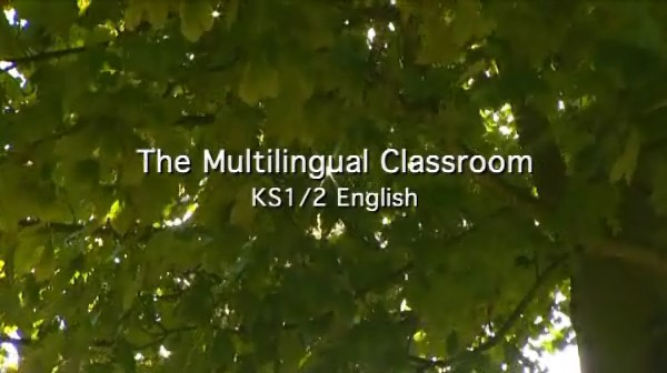 KS1/2 English – The Multilingual Classroom