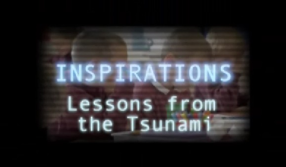 Lessons from the Tsunami