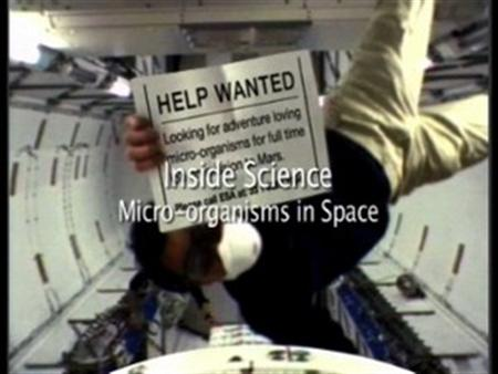 Micro-organisms in Space
