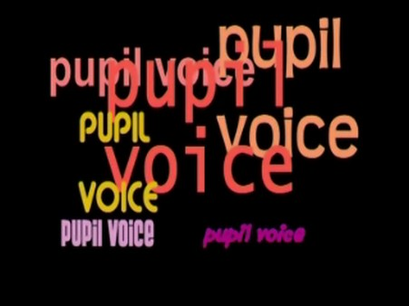 Pupil Voice – Learner Teacher, Teacher Learner