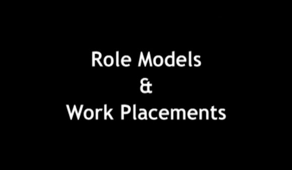 Role Models and Work Placements