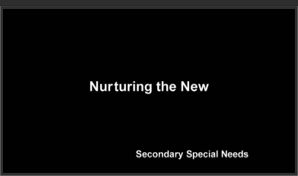 Secondary Special Needs – Nurturing the New