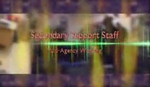 Secondary Support Staff – Multi-Agency Working