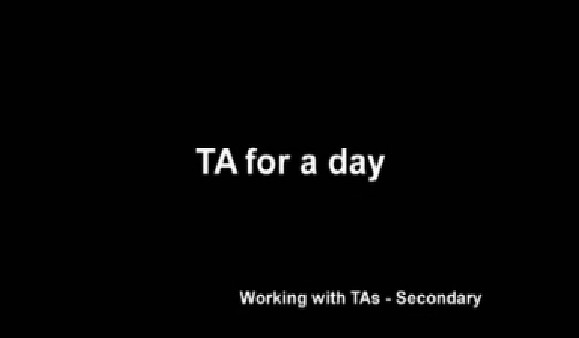 TA for a Day