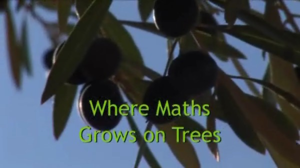 Where Maths Grows On Trees