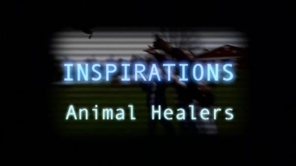 Animal Healers