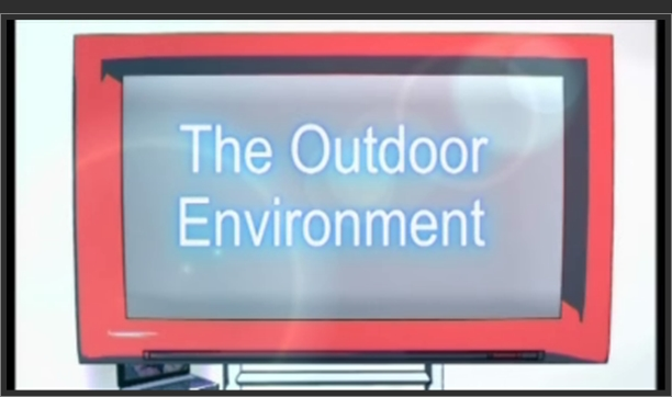 Early Years – The Outdoor Environment
