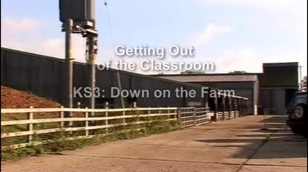 KS3: Down on the Farm