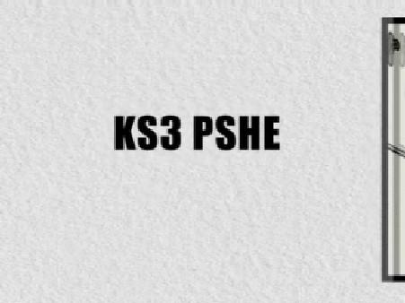 KS3 PSHE – 24-Hour Pupil Food Diaries