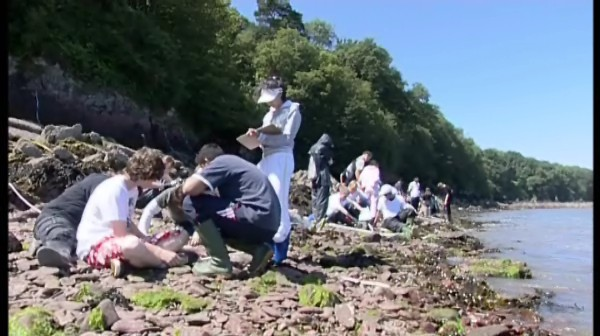 Pembrokeshire Field Studies