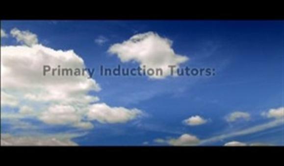 Primary Induction Tutors – Three School Stories
