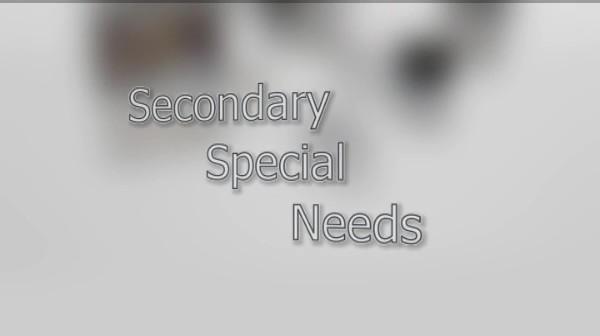 Secondary Special Needs – Understanding Autism