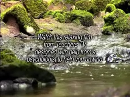 Stress Relief Video – Calming Countryside